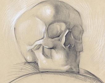 "Original skull drawing - academical anatomy drawing - ""Skull"", pencil on paper"