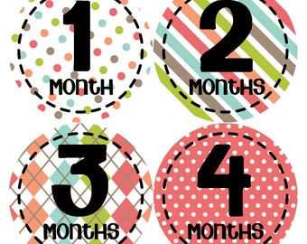 Monthly Baby Stickers Baby Month Stickers Baby Girl Month Stickers Monthly Photo Stickers Monthly Milestone Stickers 267