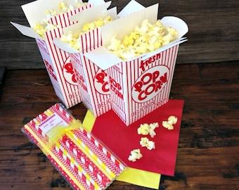 12 Popcorn Box/Straw Combo, Movie Night, Sleepover, Carnival or Picnic