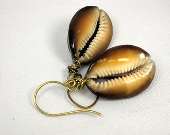 Cowrie Shell Earrings with brass earwires