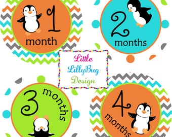 Baby Month Stickers Baby Monthly Stickers Girl Monthly Shirt Stickers Penguins Orange Blue Shower Gift Photo Prop Baby Milestone Sticker
