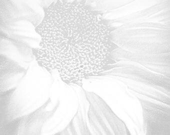 Sunflower White on White - Giclee Print