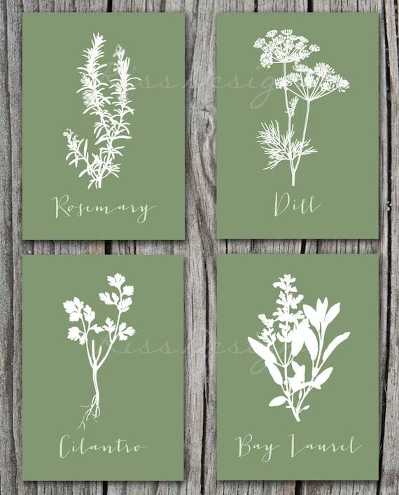 Herbs Kitchen Art Four 5x7 Herb PRINTABLES / Bay By RissDesign