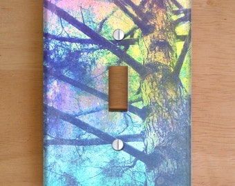 Rainbow Tree Vinyl Light Switch Cover, Outlet Cover, Wallplate, Home Decor, Rainbow, Nature, Pastels, Redwood, Photography, California, Tree