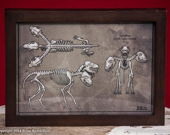 Cerberus Skeleton Faux-Scientific Print