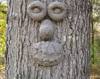 Smiley Face Tree Face