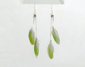 "green feathers earings_natural feather ""inséparable"" bird__silver plated chain_OOAK_hand made in france"
