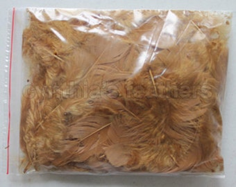 """10g (0.35Oz) ginger 3~4"""" turkey plumage feathers 80~120 counts, for crafting, sewing, etc, SKU: 7G11"""