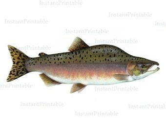 Fish printable, fish download, fish clip art, salmon fish, salmon art, printable illustration, pink salmon, instant download-- item no 42