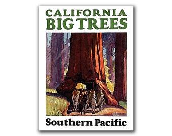 California Travel Poster Hiking Art Nature Print (H271)