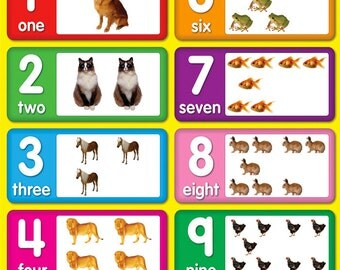 Collection Numbers Poster For Kids - Notarnyc