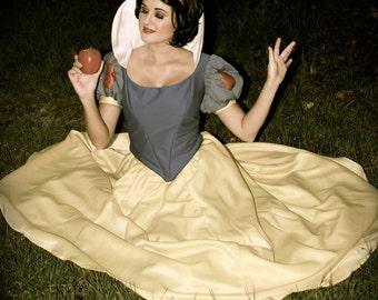 Snow White Princess Gown