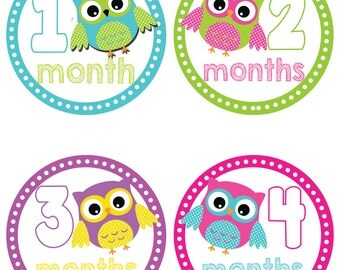 Owl Baby Belly Stickers ~ Baby Milestone Stickers (201)
