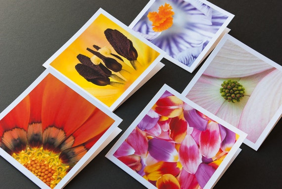 Floral Greeting Cards, Macro Photography, Cards With Envelopes, 5 Blank Card Set, Paper Goods, Flower Cards