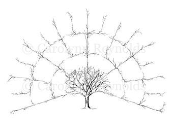 BLANK 4 Generation Family Tree Fan Chart { Digital File Only --16x20in }