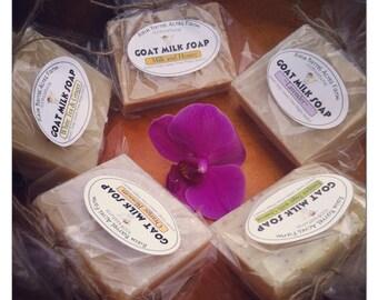 5 Variety Pack of Goat Milk Soap