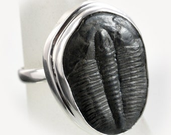 Trilobite Sterling Silver Ring