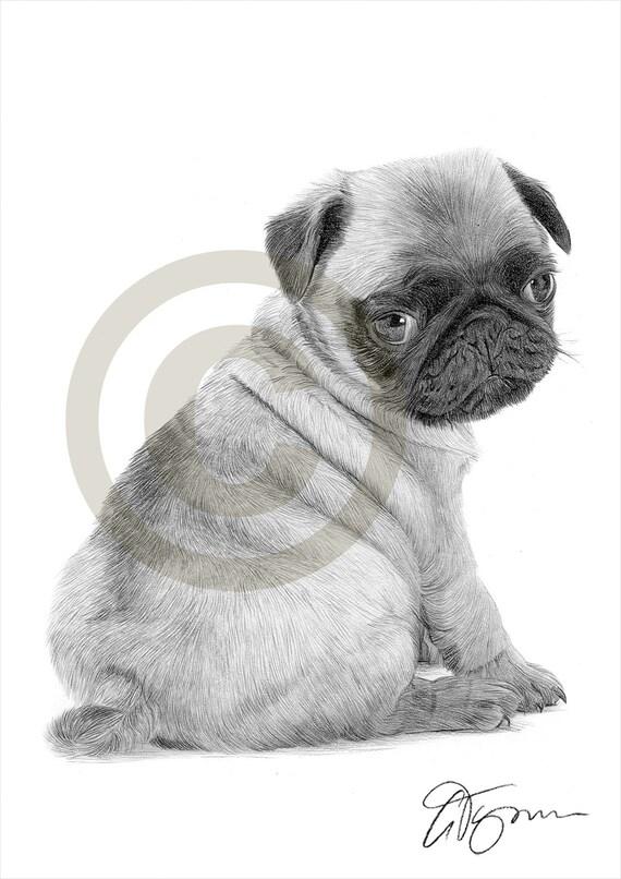 Matita di cane pug cucciolo giocattolo disegno opera di for Cane disegno facile