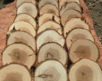 "25 tree slices- 1"" or 1.25"" Juniper wooden craft discs/tree cookies/wood blanks- unsanded Rustic wedding decor, table numbers, vase filler"