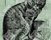 Digital Download Handsome Tabby Cat Sitting, Vintage Illustration digi stamp, digital graphic, Seated Kitten Kitty, Antique Illustration