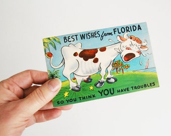 1930s Linen Postcard, Clever Comics Cow,  Florida Beach, Travel Souvenir, Kitsch Card, Humorous Card, Vintage Ephemera, Cartoon Animal