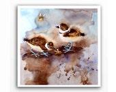 Wild Life Bird Art - Watercolor Painting Reproduction - Watercolour Fine art print Bird Killdeer Baby Woodland animal Nature Art -N 10x10 in