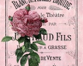 French Perfume LARGE format digital image download Paris pink roses Buy 3 Get one Free