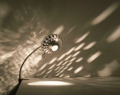 SteamLight Clamp Lamp, Designer edition - On Sale