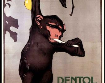 Monkey Brushing Teeth Print - Vintage Italian Ad Poster - Dentist Office Decor - Dental Poster - Kids Bathroom Decor
