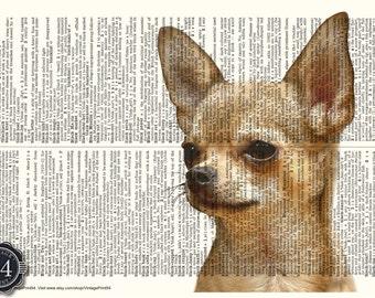 CHIHUAHUA PHOTO Chihuahua Art Dictionary Art Print Vintage Upcycle Book Page Chihuahua Home Decor Chihuahua Wall Decor Chihuahua Picture Dog
