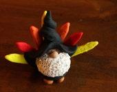 Mr. Thanksgiving Turkey Gnome