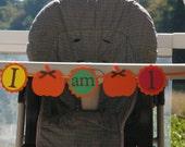 Pumpkin I AM 1 banner, Fall, autumn,Harvest, birthday decorations, Pumpkin party, September, October, November