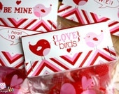 Love Birds Themed Printable Valentines Treat Bag Toppers- DIY Printable File