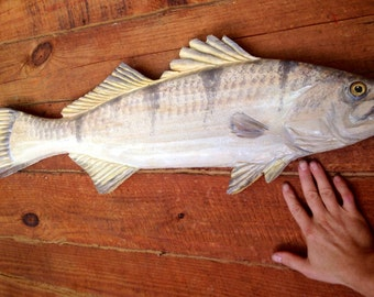"White Sea Bass 36"" chainsaw wood carving rustic beach home decor white weak fish sculpture wall mount original coastal living chainsaw art"