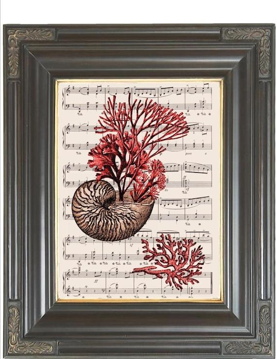 Nautilus shell Red coral print on dictionary or sheet music pg COUPON SALE Beach art Dictionary art print Wall decor Digital print No 360