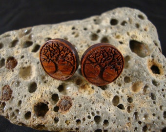Round Stud / Post Earrings w/ Tree engraving - 14 mm Diameter - Cocobolo Wood - brown/orange/red