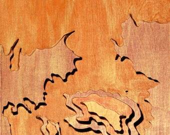 Between Wildhorse Wash and Lithodendron, Petrified Forest, Acrylic on Birch Plywood, map art