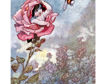 Flower Fairy Card   Faerie Hides From Bee in Rose   Repro Charles Robinson