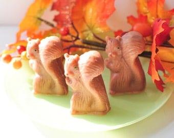 Woodland Squirrel soap - Maple Sugar scented - Rustic soap - Animal Soap - cute soap