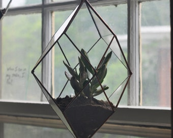Iridis Terrarium, medium -- for air plant terrarium or small succulent -- stained glass -- terrarium supplies -- eco friendly