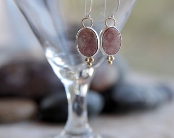 Silver and Gold Fossilized Coral Earrings