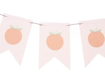 Georgia Peach Flag Banner / Peach Garland