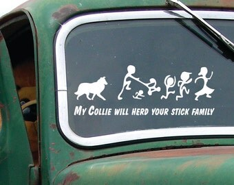 Collie herds - My Collie will herd your stick family