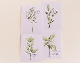 Set of 4 Cooking Herbs Prints