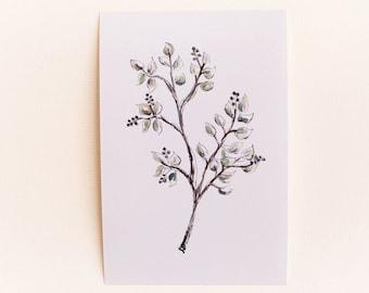 Any 1 Wildflower Botanical Print