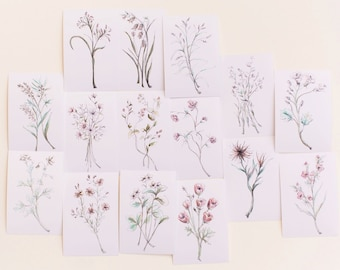 Beautiful Botanical Print Set, Set of 15 Floral Prints