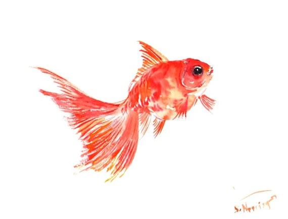 Poisson rouge aquarelle originale peinture 12 x 9 en art for Poisson rouge artificiel
