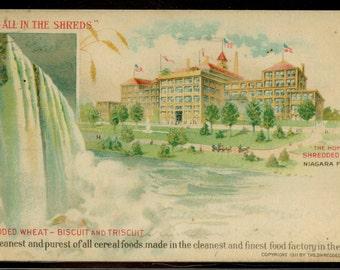 Shredded Wheat Niagara Falls Postcard Antique Undivided Back Postmarked 1911