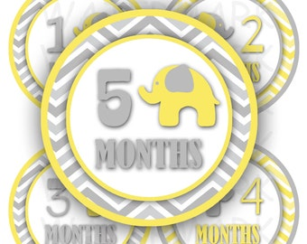 Elephant Baby Monthly Milestone Images in Gray and Yellow - Printable - Digital Collage Sheet  - 4 inch Round Circles - INSTANT DOWNLOAD