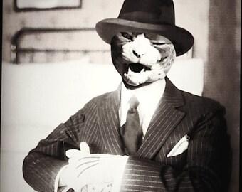 cat art gangster film noir black and white sphinx cat